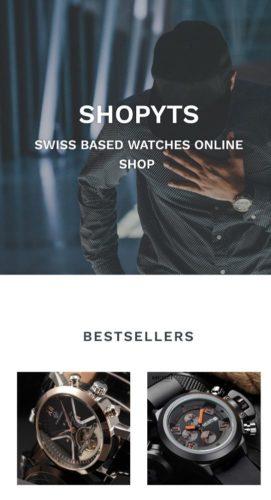 Online-shop Dropshipping